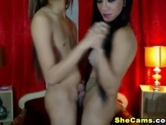 Sexy And Exotic Shemales Enjoy Playing Their Cocks
