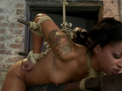 Skin's a sweaty mess, we rip massive orgasms from her quivering body.Brutal bondage, perfect ass