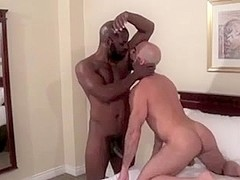 Hairy bald daddy craves BBC bareback