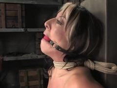 Hot MILF Gina Caruso, a cable sport caster, brings her hot, shaved body to Hogited.