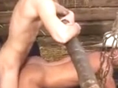 Hot blonde porn star fucks with a horny guy