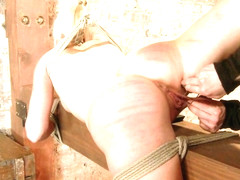 Allie James in Hot Girl Next Door Tomboy Gets Bent In Unforgiving Bondage.  - HogTied